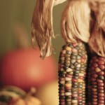 Short List of Fun Fall Activities in Central Ohio
