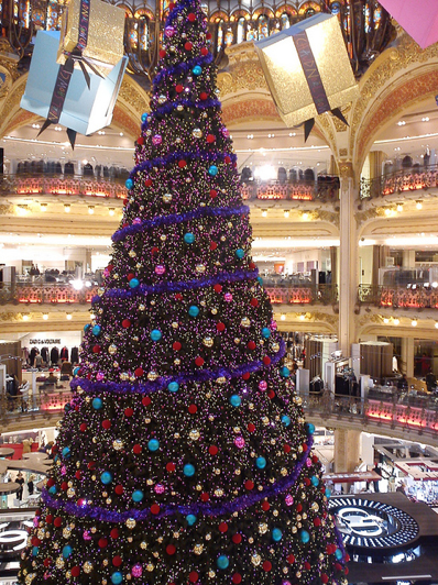 Beautiful Christmas Trees Top 5 The Columbus Team Kw Capital