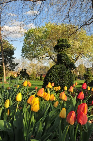 Columbus OH Topiary Garden