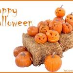 Happy_Halloween_TCT