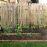 Home Gardening Classes Around Columbus