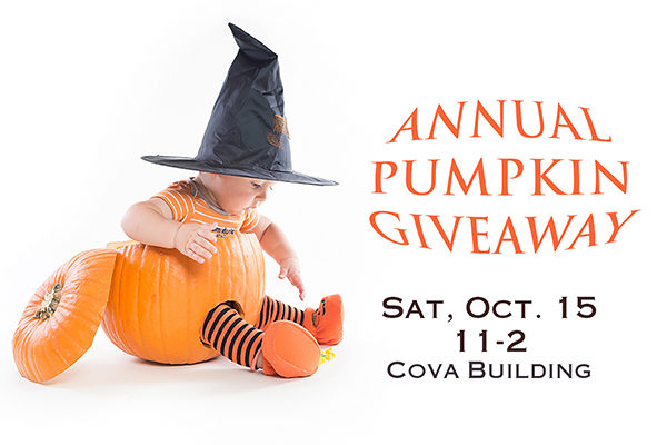 Annual Pumpkin Giveaway